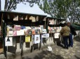 Parisian Book Stalls 06